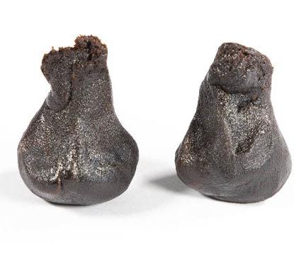 2 Stücke von haschisch legal geformt Girl Scout Cookies