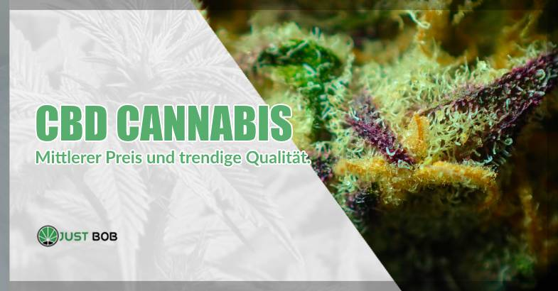 CBD-Cannabis mittlerer Preis