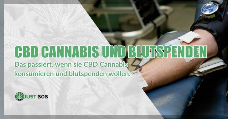 CBD Cannabis und freiwillige Blutspenden