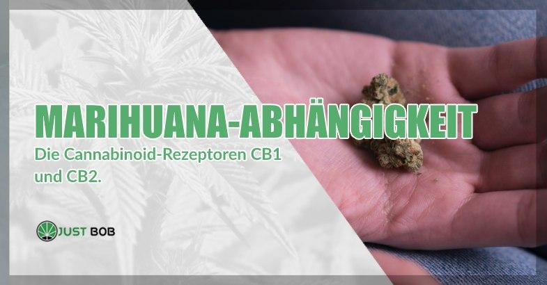 Marihuana Abhängigkeit und cba gras