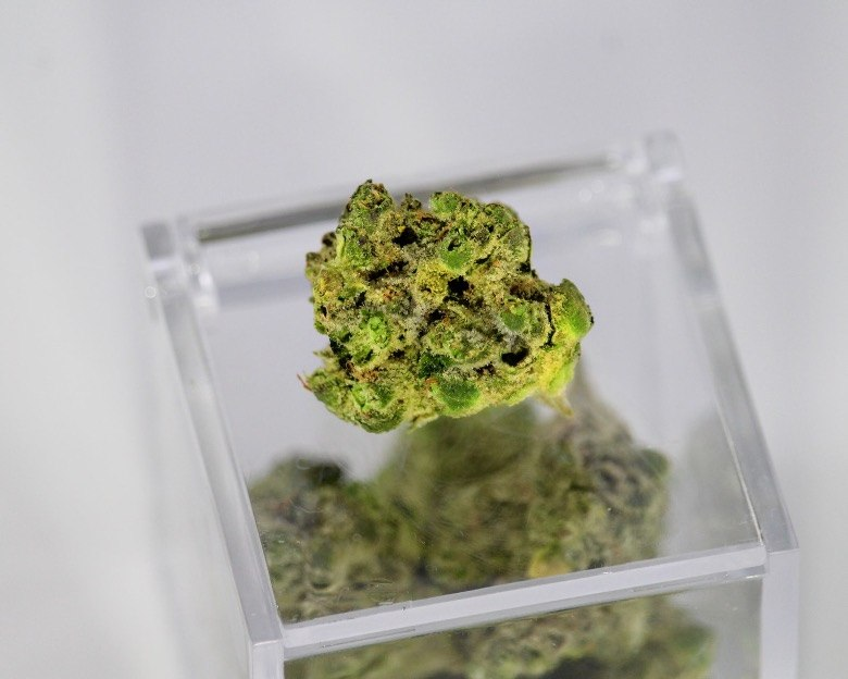 THC und CBD verantwortlich für Cannabis-Effekte