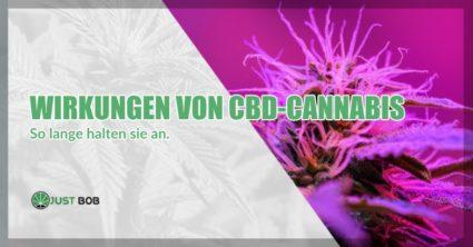 Wirkungen von CBD Cannabis