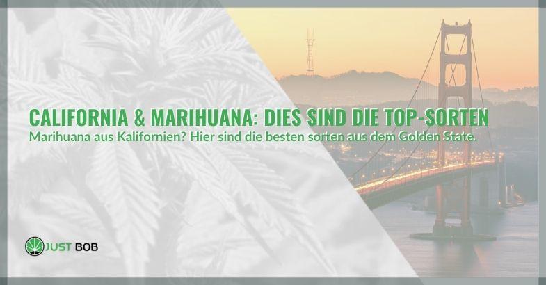 California & Marihuana: Dies sind die Top-Sorten