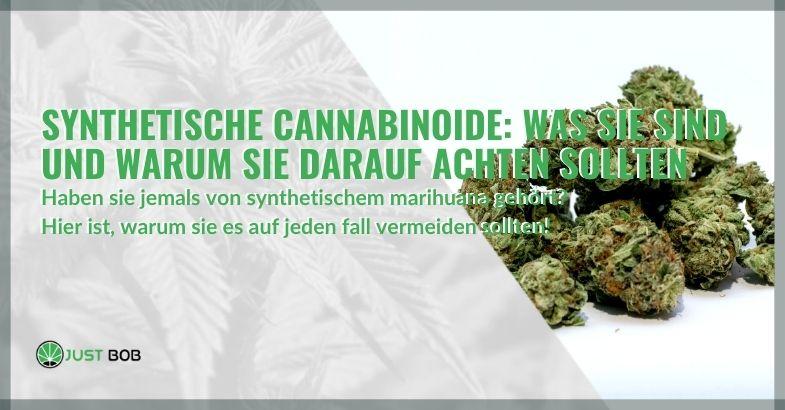 Synthetische Cannabinoide: Was sie sind und warum Sie darauf achten sollten