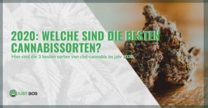Was waren die besten Cannabis-Sorten im Jahr 2020?