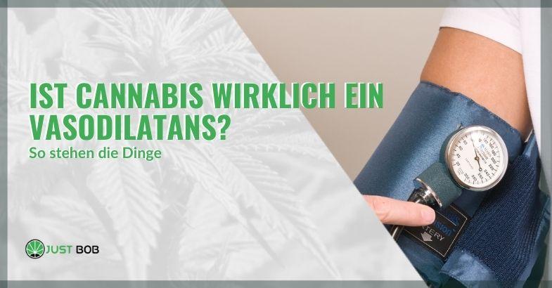 Hat Cannabis wirklich eine gefäßerweiternde Wirkung? Und wie funktioniert es?