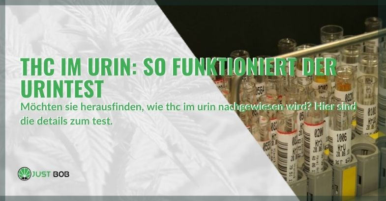 Wie funktioniert der THC-Urintest?
