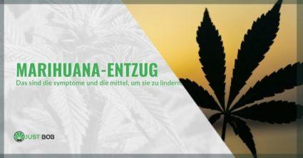 Natürliche Heilmittel und Symptome des Marihuana-Entzugs