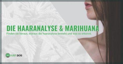 Wie funktioniert der Marihuana-Haartest?