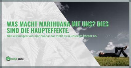 Was macht Marihuana mit uns?