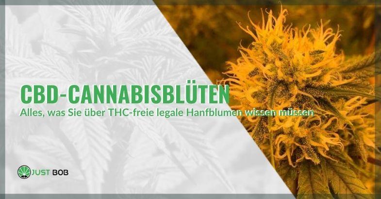 Alles, was Sie über CBD-legale Cannabisblumen ohne THC wissen müssen