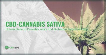 Marihuana Sativa CBD: Die Unterschiede zu Cannabis Indica