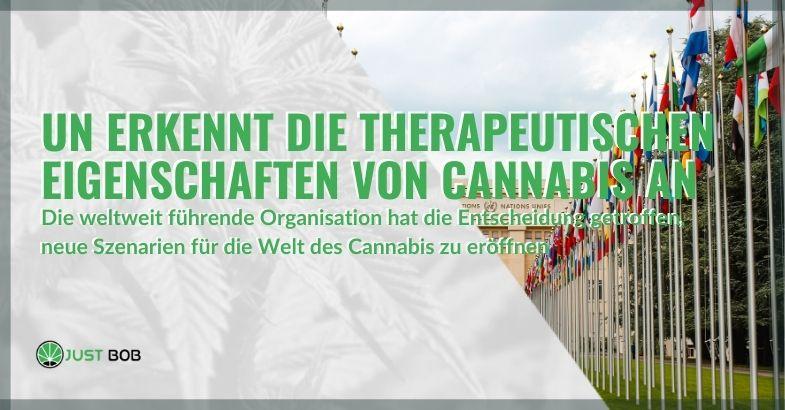 Die UNO hat erkannt, dass Cannabis medizinische Eigenschaften hat