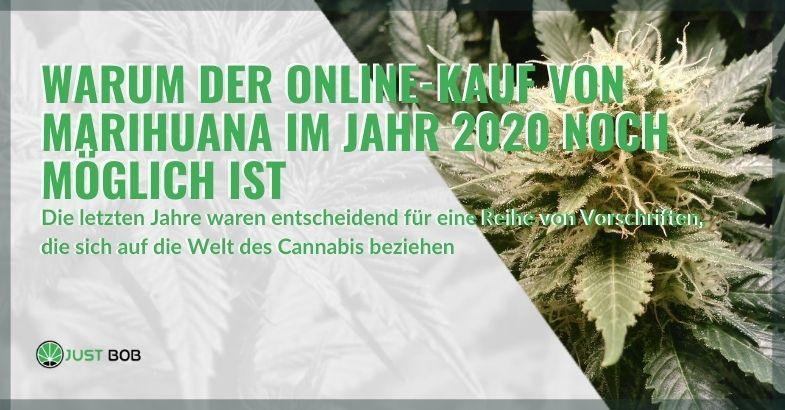 Warum kann man im Jahr 2020 immer noch Marihuana online kaufen?