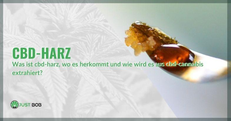 CBD-Harz: wo es gefunden und verwendet wird
