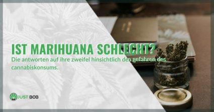 Ist Marihuana schlecht? Die Informationen, Wirkungen und Unterschiede zwischen THC und CBD.