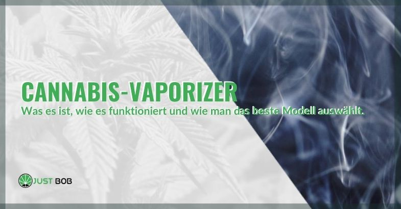 Was ist der Cannabis-Vaporizer und wie wählt man ihn aus?