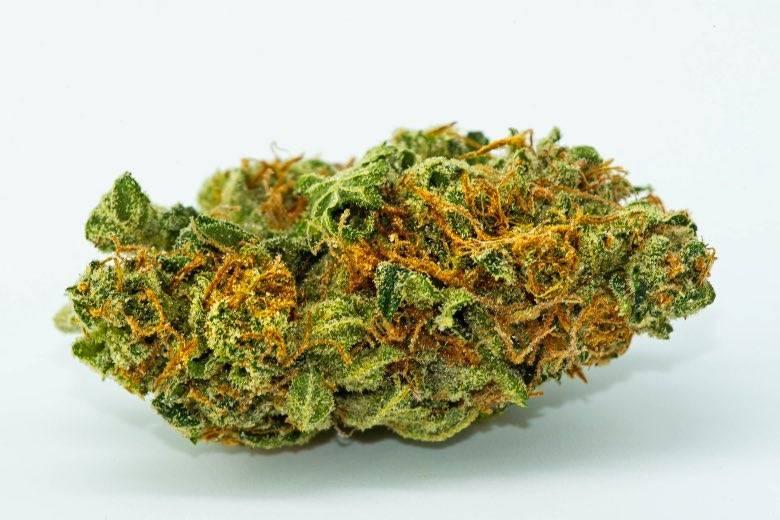 Eine hochwertige Cannabisknospe