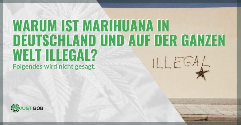 Deshalb ist Marihuana in Deutschland und auf der ganzen Welt illegal