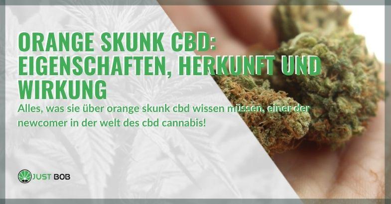 Die Eigenschaften und Herkunft von Orange Skunk CBD Cannabis