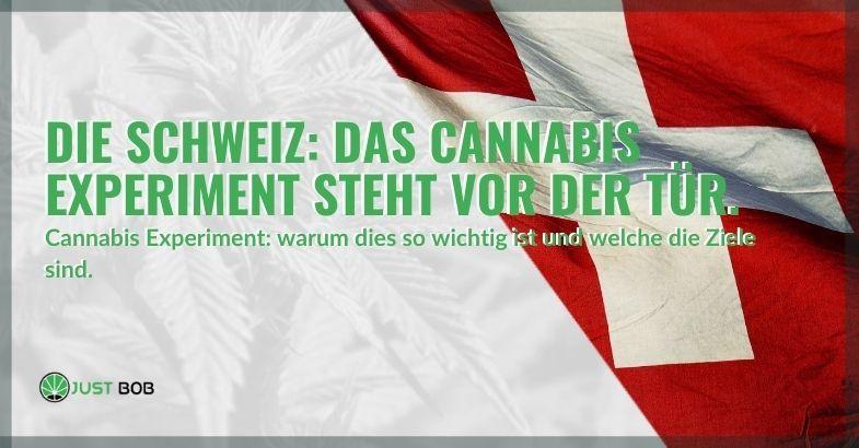 Das Experimentieren mit Cannabis ist in der Schweiz in Kraft getreten