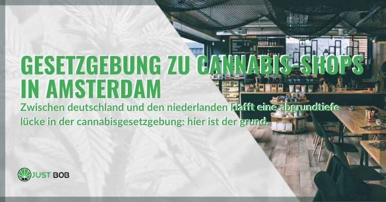 Die Kluft in der Cannabisgesetzgebung zwischen Deutschland und den Niederlanden