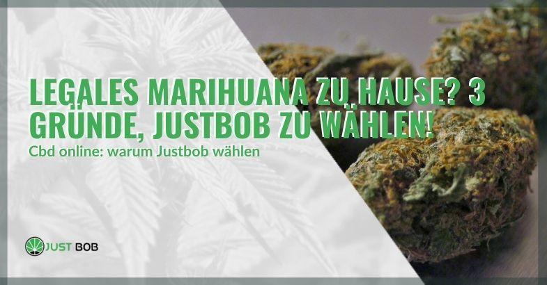 Justbob wählen, um Marihuana zu Hause zu kaufen: 3 gute Gründe