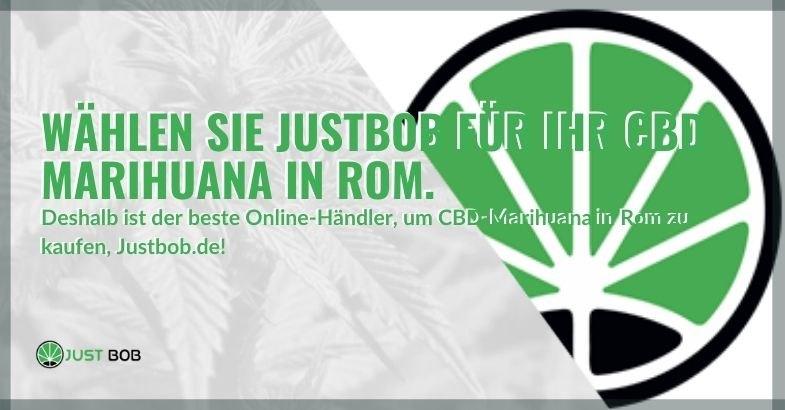 Deshalb kaufen Sie CBD-Marihuana bei Justbob, wenn Sie in Rom sind
