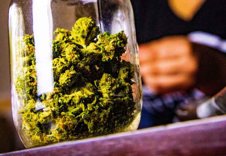 Cannabis mit THC zu therapeutischen Zwecken