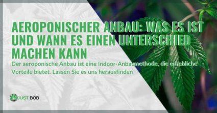 Die Vorteile des aeroponischen Anbaus mit Cannabis
