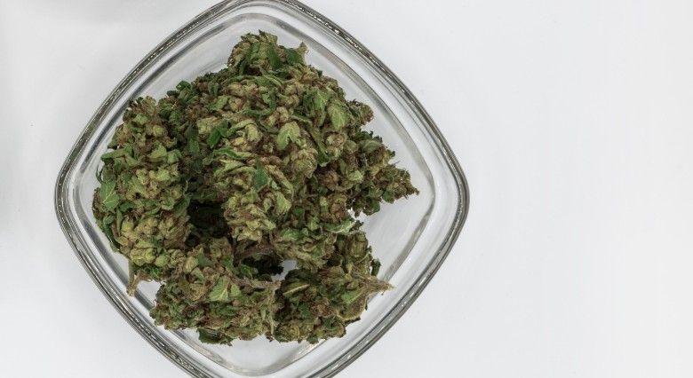 Preise und Qualität von legalem Marihuana auf Justbob