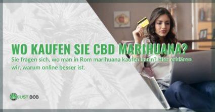 Wo kann man CBD-Marihuana kaufen?