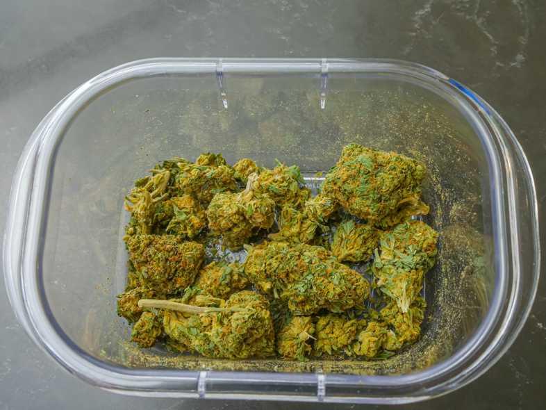 Wo kann man CBD-Cannabis kaufen?