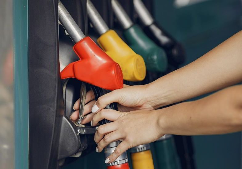 Hanf als ökologischer Brennstoff