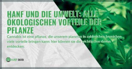 Die ökologischen Vorteile von Hanf