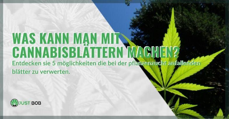 5 Möglichkeiten, Cannabisblätter zu verwenden